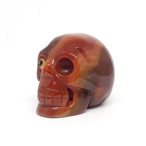 Crâne, Cornaline